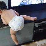テレビ台に登る